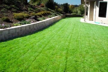 lawn installation monterey
