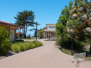 K & D Landscaping, gallery image