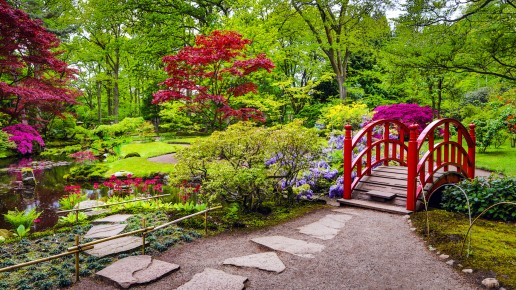Traditional Japanese Garden Landscape