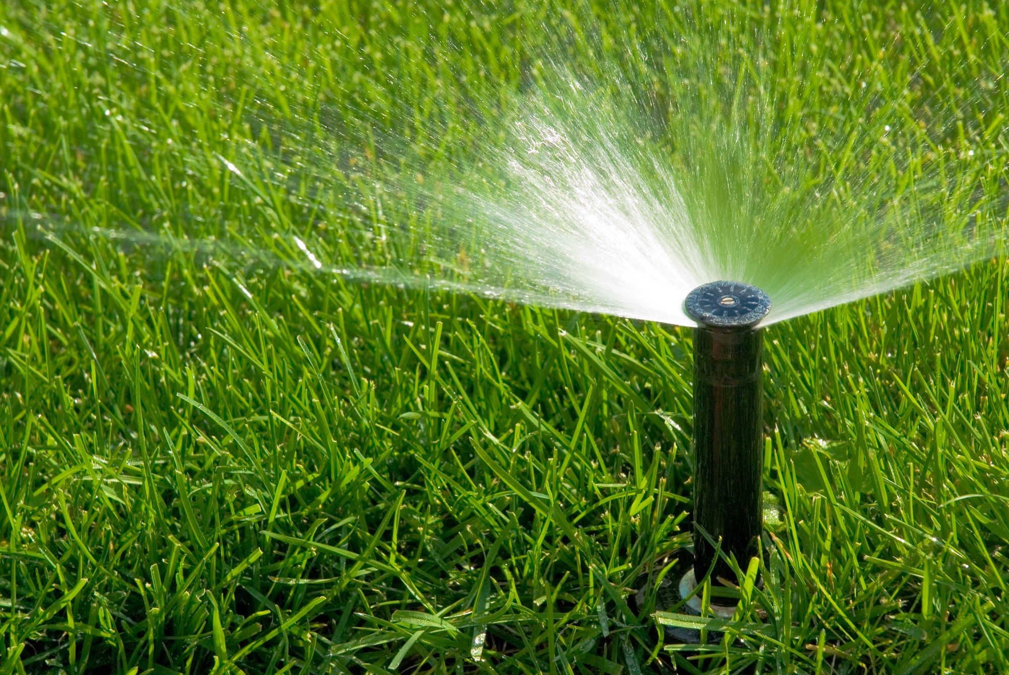 When to Upgrade your Sprinkler System
