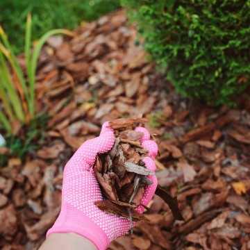 Woman with pink glove holding mulch to prevent soil erosion