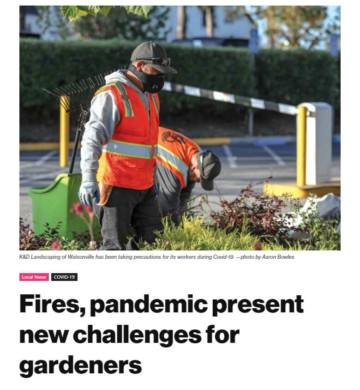 Fires, pandemic present new challenges for gardeners