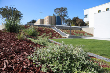commercial landscaping, CSUMB